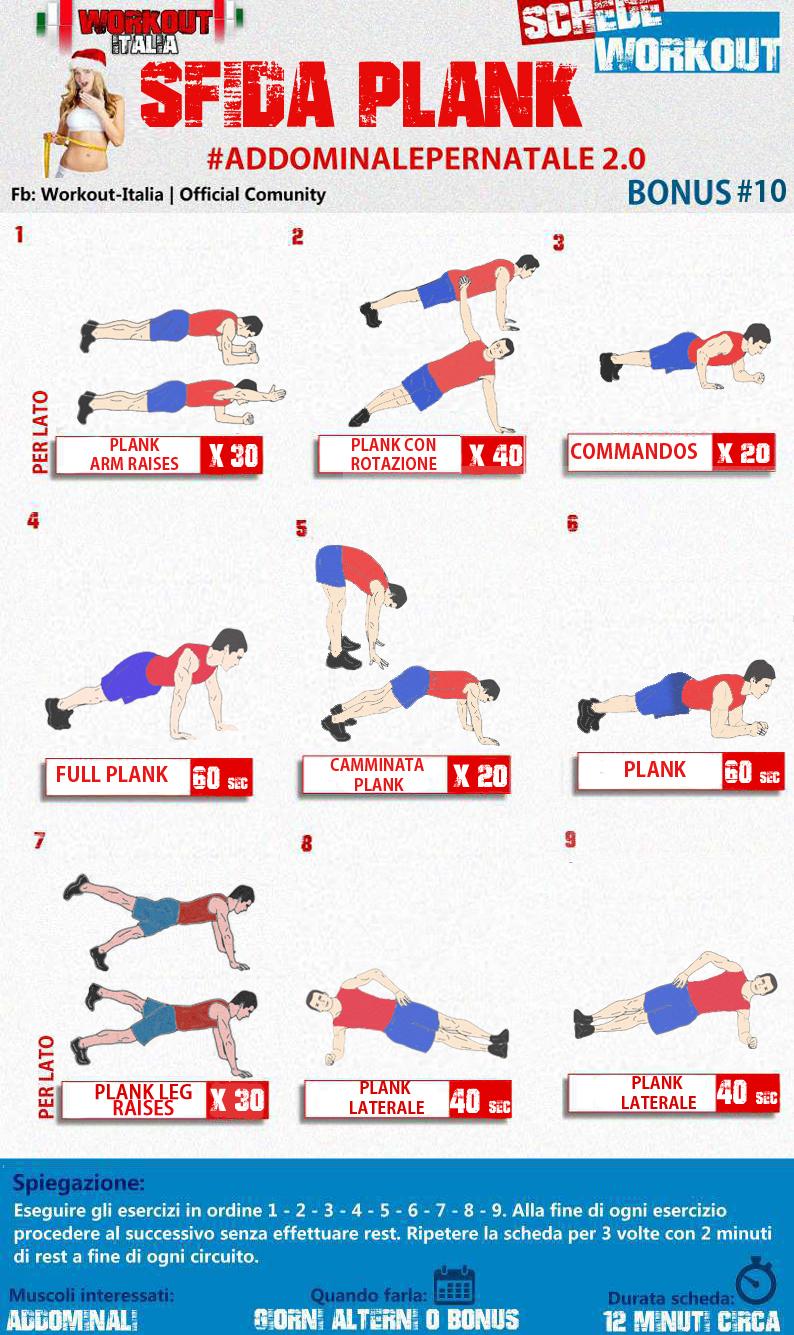 fitness schema massa